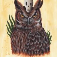 5.The Owl